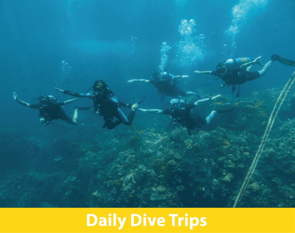 5 Star PADI IDC Centre offering daily scuba diving in Koh Lanta, Thailand