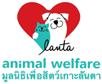 Dykning på Koh Lanta - Lanta Animal Welfare
