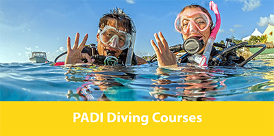 Diving Koh Lanta - Padi Diving Course